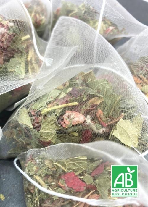 thé bio minceur bio tisane-et-thé.fr maitre tisanier en sachets individuels